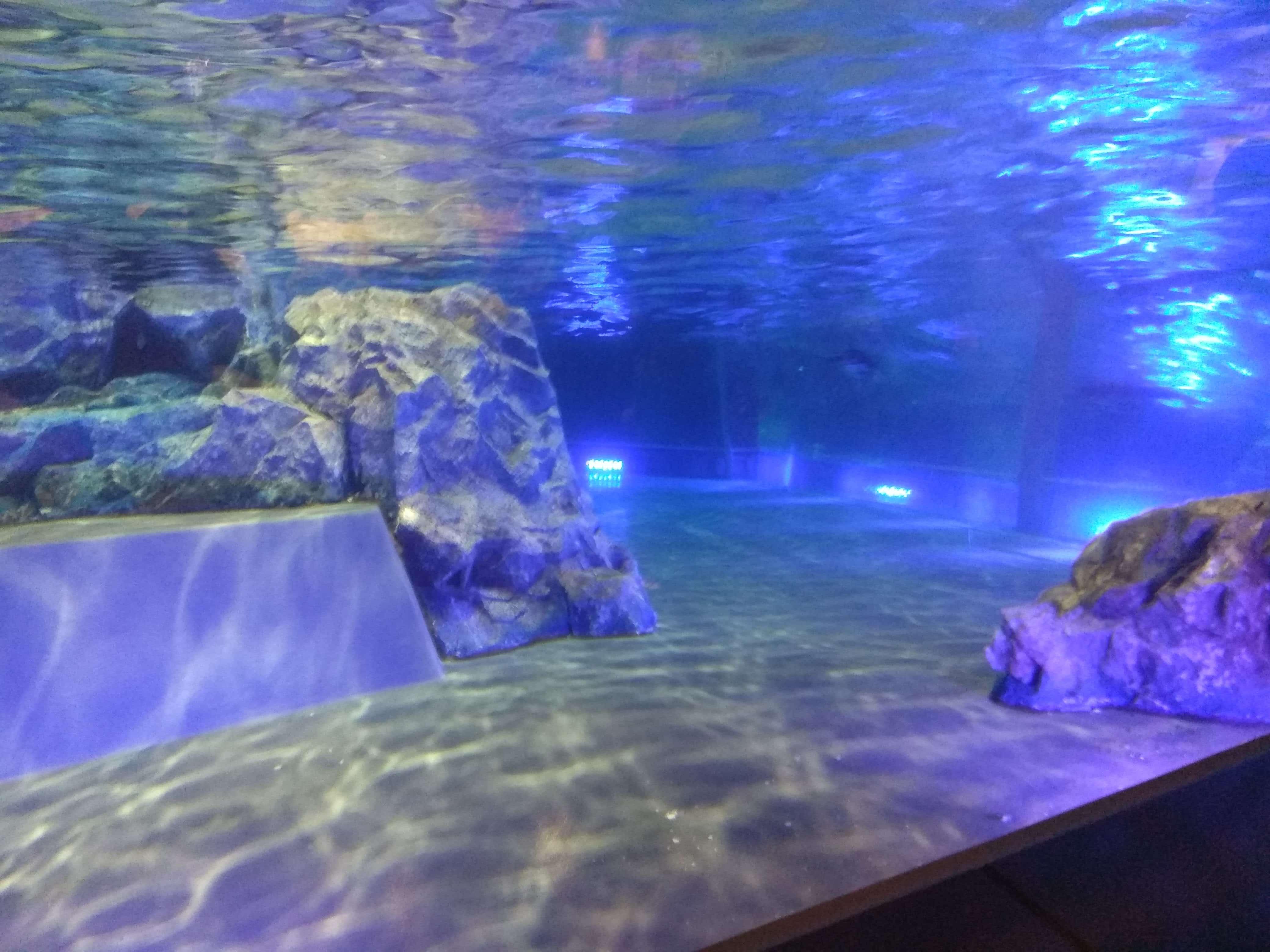 Качественный и удобный бассейн